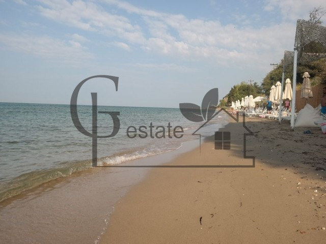 Land on the seafront | ID: 493 | Greco Paradise